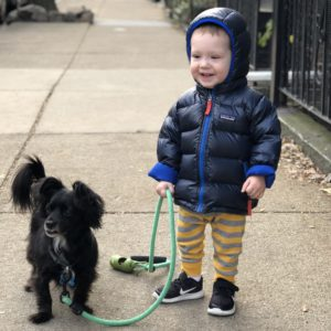 An Update: Milo at 18 Months