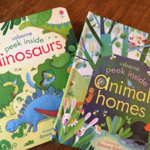 Our Favorite Books for Kids, and an Usborne Book Party to Benefit MGH